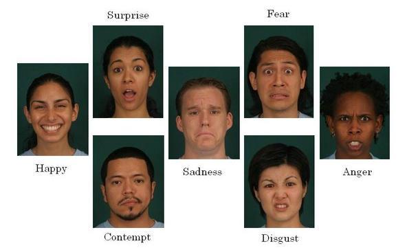 siete emociones basicas